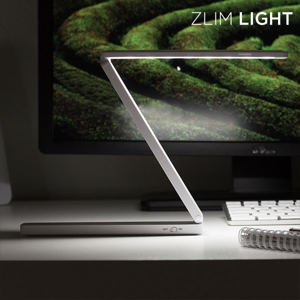 Zlim Light Foldable Mini LED Lamp with USB